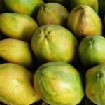 ZObacz, jakie są ceny w Kostaryce